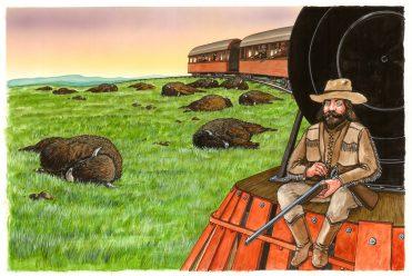 illustrazioni - buffalo bill
