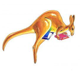 illustrazioni - canguro