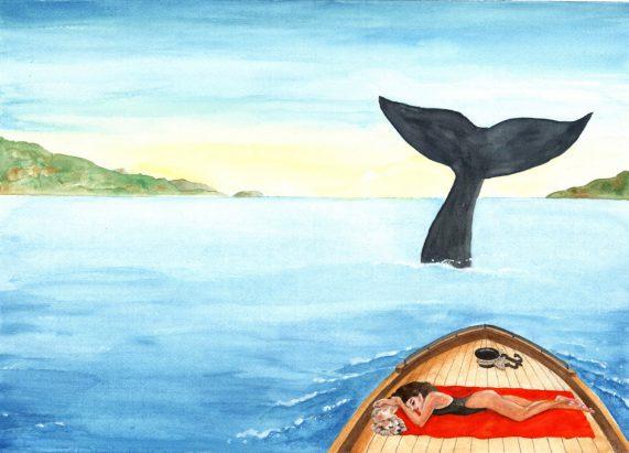 pitture - balena