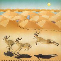 illustrazioni - deserto