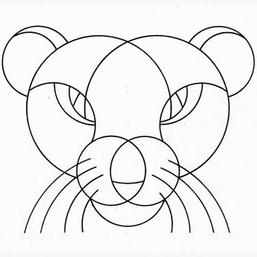 compasses zoo - pantera contorno