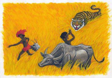 illustrazioni - tigre