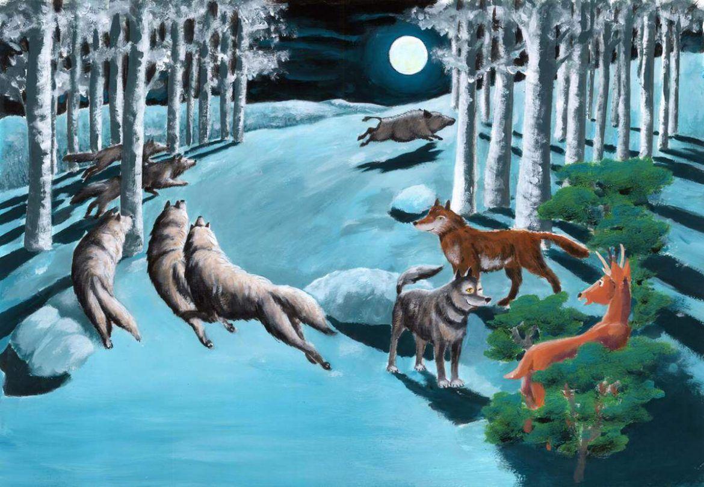 illustrazioni - animali nel bosco