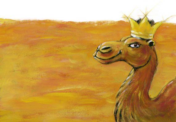illustrazioni - cammello