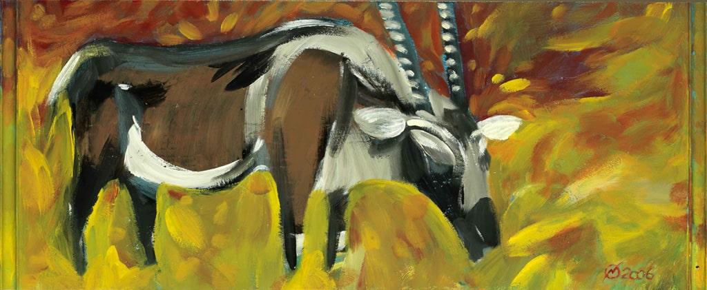 pitture - antilope