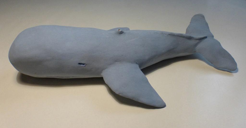 ceramiche - capodoglio spermwhale