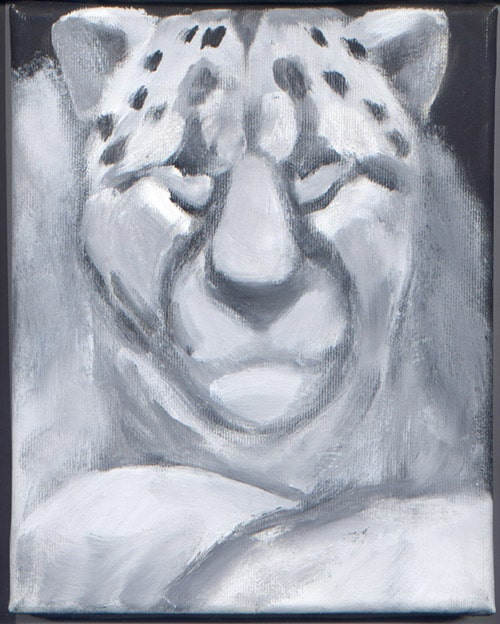 pitture - leopardo grigio