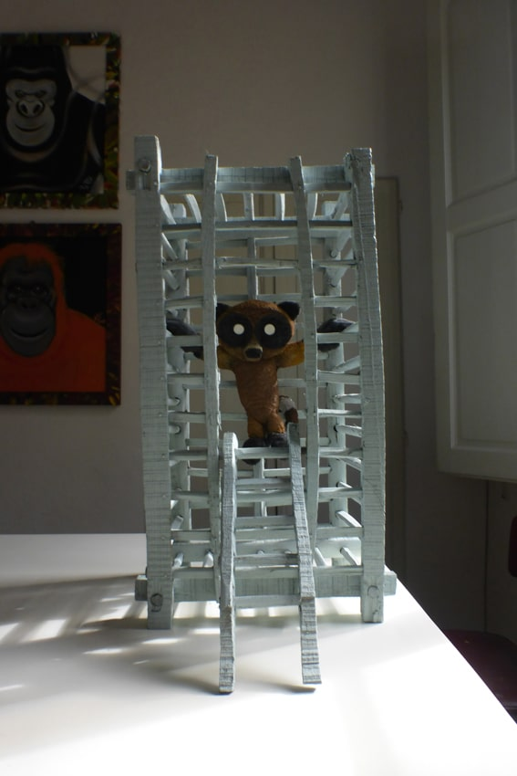 sculture - procione in gabbia