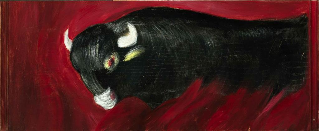 pitture - toro