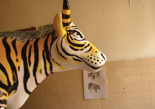 animali dipinti - bue mischiato